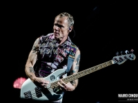 red-hot-chili-peppers-foto-concerto-milano-21-luglio-2017-8