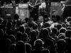 swans_alcatraz_mairocinquetti_12102014-43