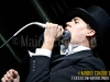 the-hives08