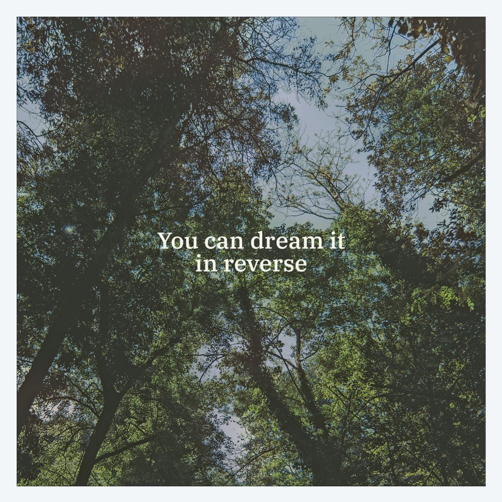 Black Tail – You Can Dream It In Reverse