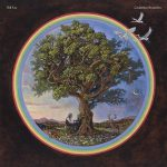 Bill Fay Countless Branches