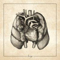 Regrowth – Lungs